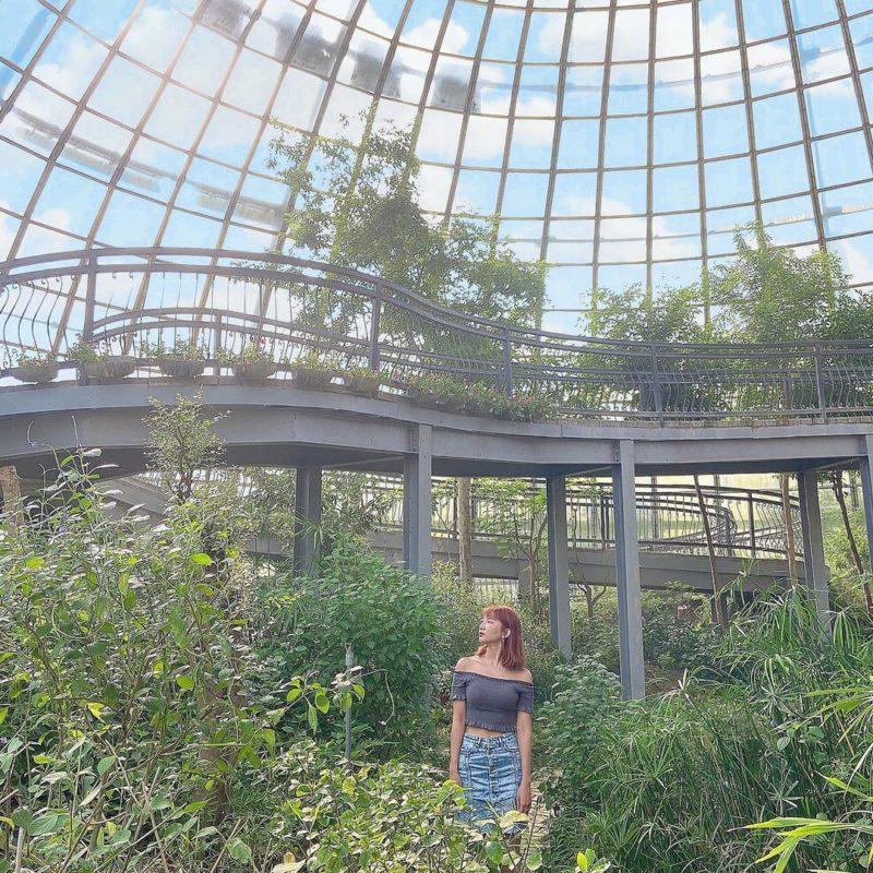 春節旅遊景點,過年旅遊走春景點嘉義新嘉大昆蟲館