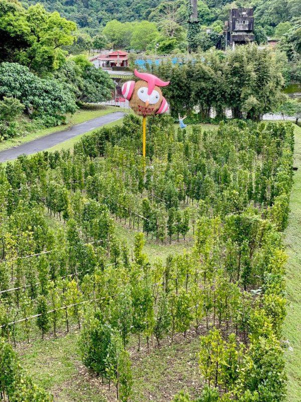 2021宜蘭綠色博覽會,宜蘭綠博,蘇澳武荖坑風景區